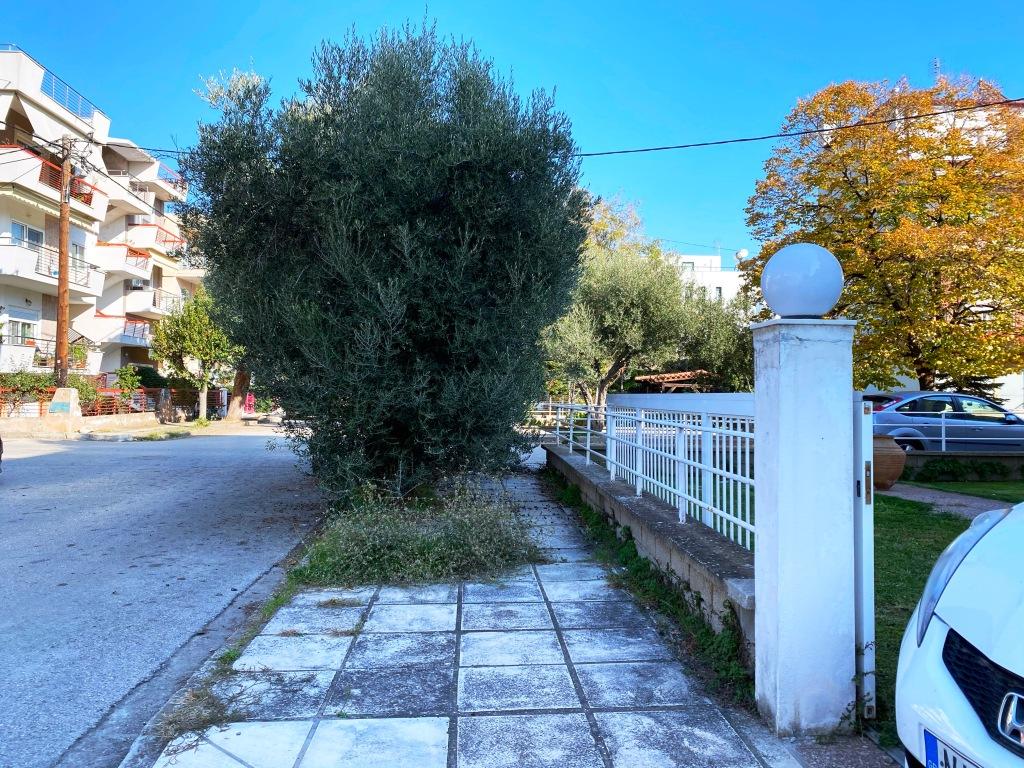 Acera-intransitable-grecia